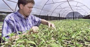 Alfag do Brasil celebra a Semana do Agrônomo